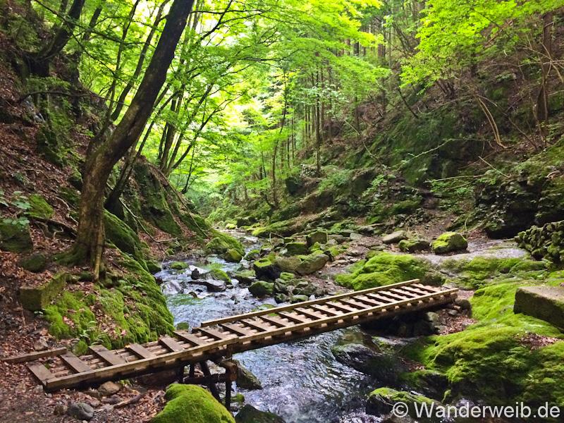 Kawanoriyama Wanderung