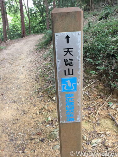 HiwadaKinchakuda (5)