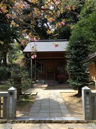 Kamakura (8)