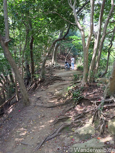Kamakura (6)