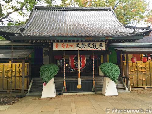 tempel-3-von-1